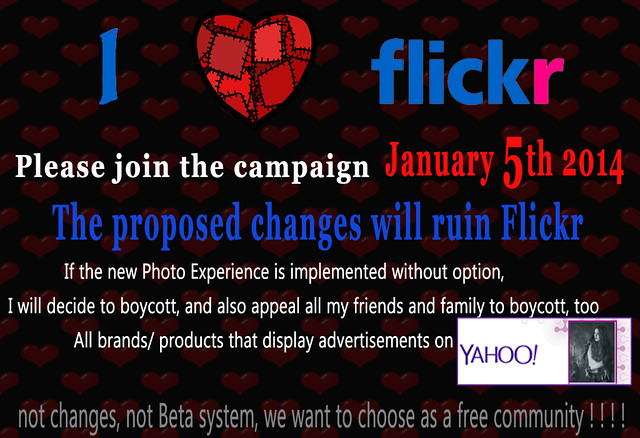 Flickr January 5th 2014