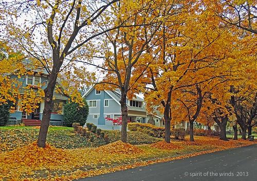autumn fall spokanewashington