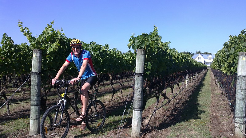 cycling through vineyards while on holiday in new zealand