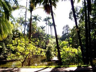 Parque Municipal B.Horizonte