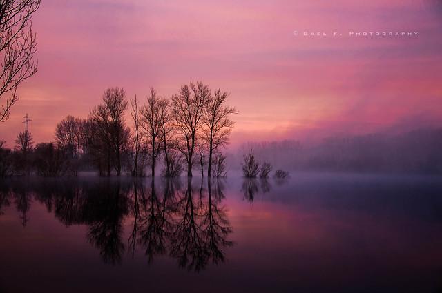 Mist on sunrise time