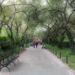 Central Park Garden