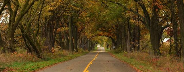 Autumn in Michigan