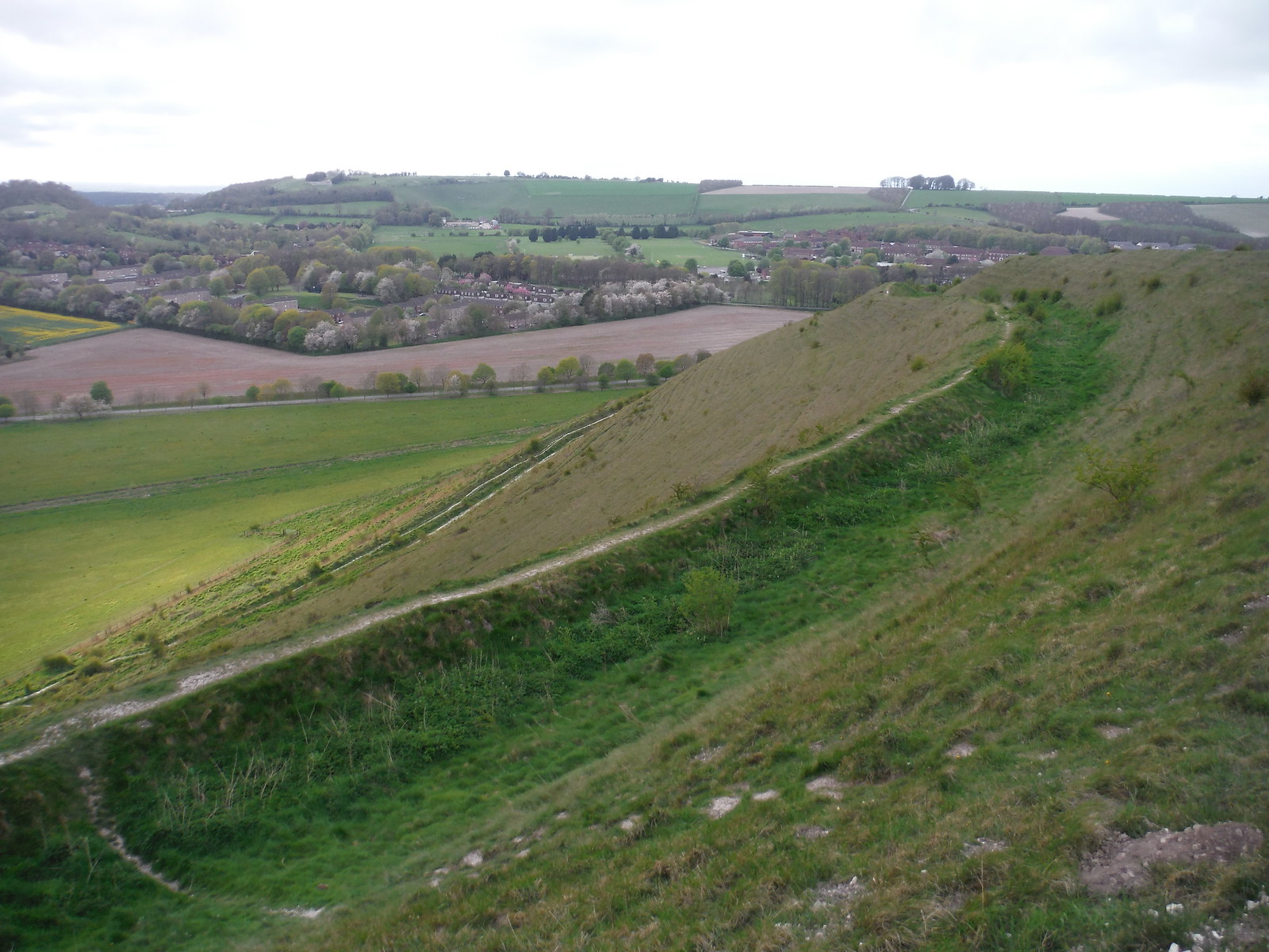 Battlesbury Camp flank SWC Walk 286 Westbury to Warminster (via Imber Range)