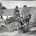 Jaunting car, Ireland by Royal Australian Historical Society