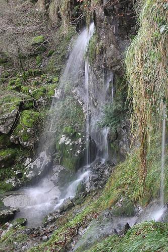 Parque Natural de Gorbeia #DePaseoConLarri #Photography 2590