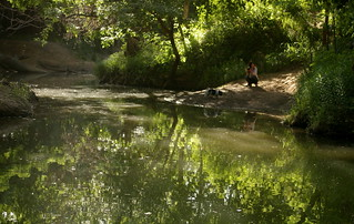 more creek reflections | by pvh photo