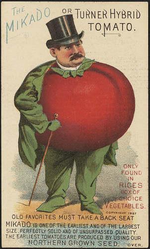 The Mikado or Turner Hybrid tomato. Only found in Rices box of choice vegetables. Old favorites must take a back seat. (front) | by Boston Public Library