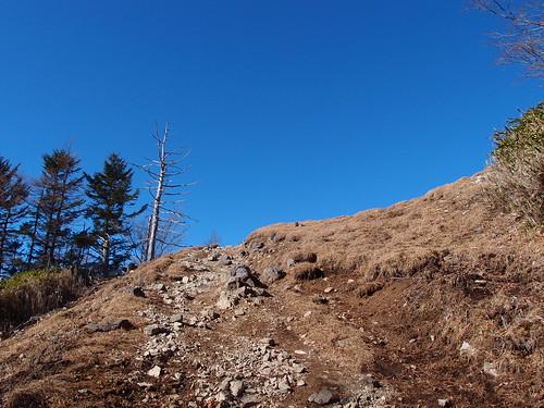 Trail from Kamozawa to summit of Mount Nanatsuishi | by *_*