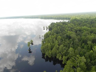 Aerial view   by U. S. Fish and Wildlife Service - Northeast Region
