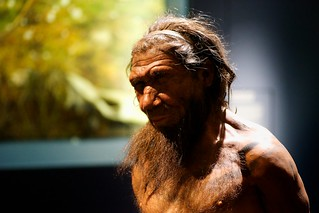 Our Cousin -Neanderthal | by p_a_h