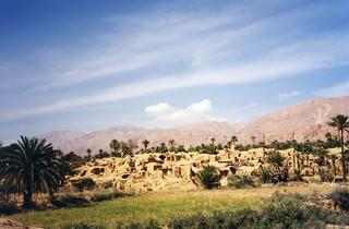 Iran - Village, Oasis in the desert