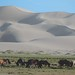2013-09-14 Mongolia Visit