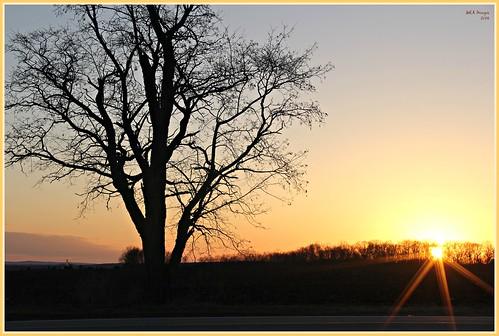 trees sunset sun nature wisconsin canon spring silhouettes sunburst cambria springtime picmonkey:app=editor