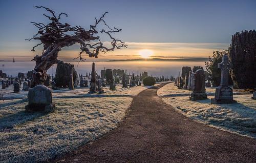 derry city cemetery fog mist sunrise landscape cityscape cityside graveyard