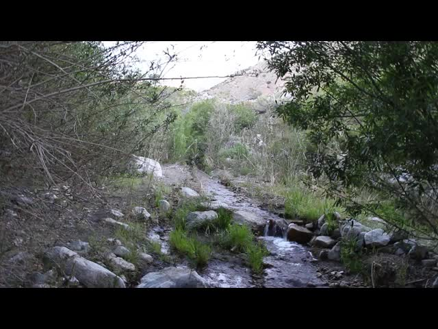 0731 Video of the North Fork of Mission Creek near PCT mile 234