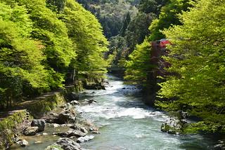 清滝川 | by taoweblog