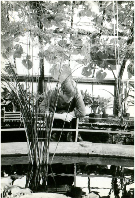 Kevin Botanics pool