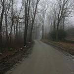 Dreary road