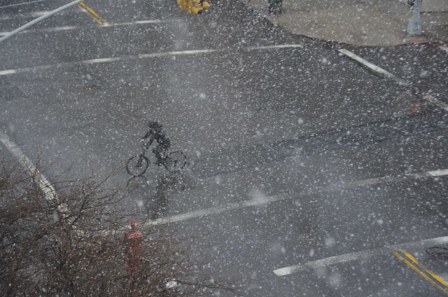 snow with bicyclist