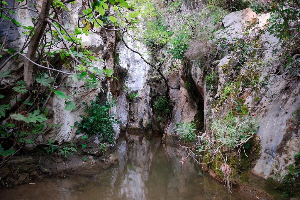 Arvi gorge | Crete: Arvi gorge