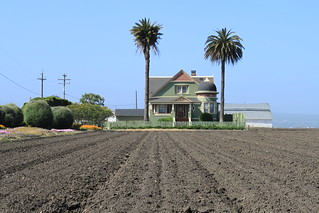 Salinas Valley agriculture May 2012 #54 | by M@v3n