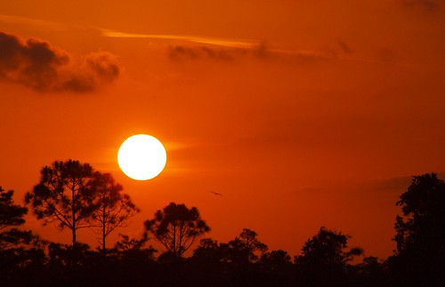 sunset red sky sun florida horizon glows martincounty joneshungryland