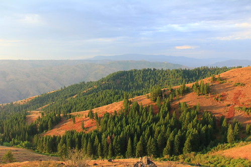 Green Hills | by BLM Oregon & Washington