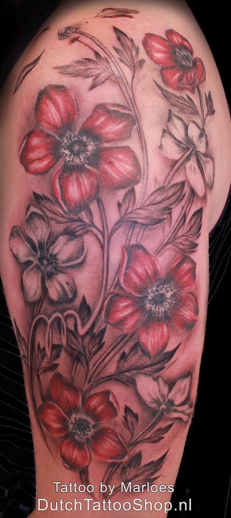 Anemoon Bloemen Bladeren Sierlijke Takjes Zwart Grijs Rood