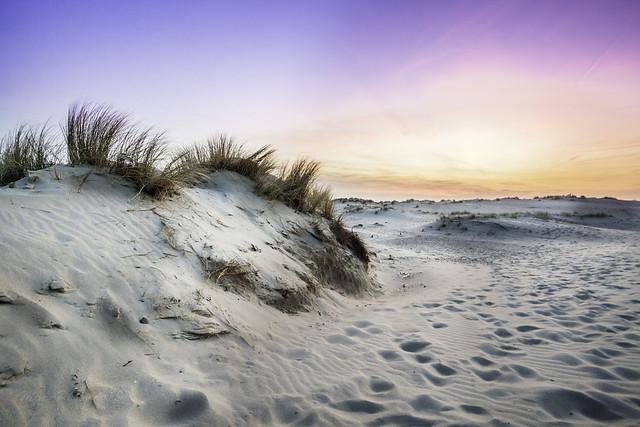 The beach..