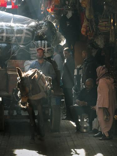 transportando mercancias   by bdebaca