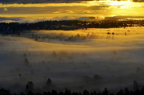 sunrise dawn nikon bc victoria goldenhour victoriabc 50mmf18 mountdouglaspark d7000