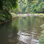 03 Viajefilos en Laos, Bolaven Plateau 18