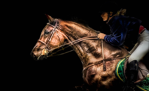 Show jumping | by pattoise