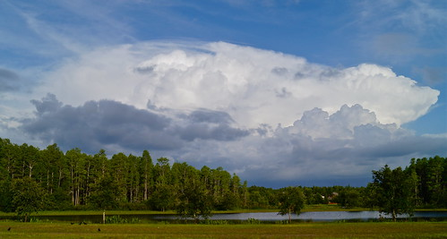 county weather florida o lakes land thunderstorm pasco