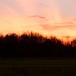 zo, 08/12/2013 - 17:53 - Dakota IMG_5028