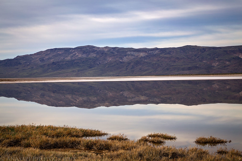 Panamint Valley Reflection