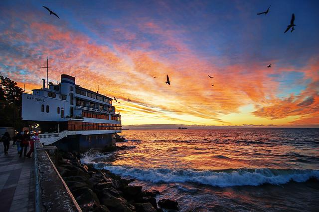 回家了! - Back in Viña del Mar - Chile