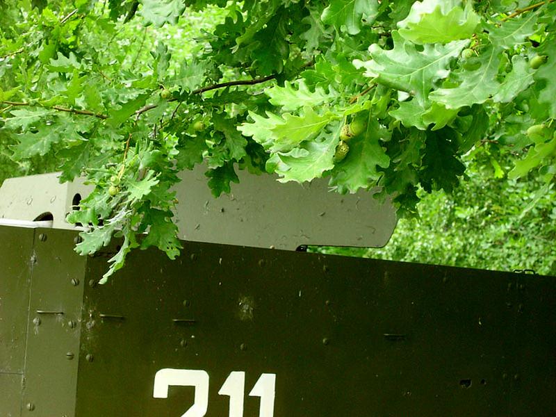 SU-57 (8)