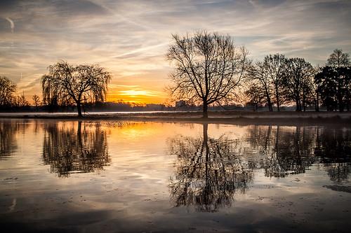 morning winter england sky sun reflection water clouds sunrise season unitedkingdom surrey bushypark