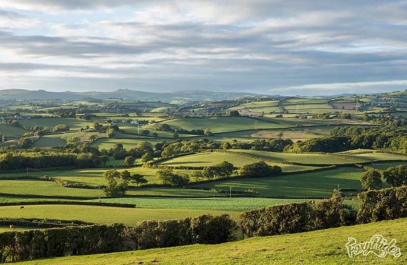 Denbury Hill