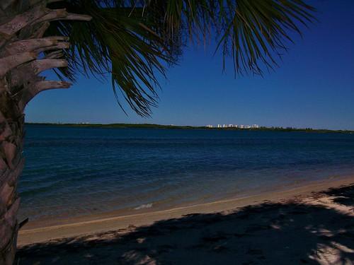florida palmetto treasurecoast sunshinestate fortpierce hutchinsonisland saintluciecounty palmettopalm sunrisecity fortpierceinlet