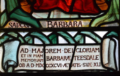 Barbara Teesdale died 1896 aged 41 (Mary Lowndes, 1897)
