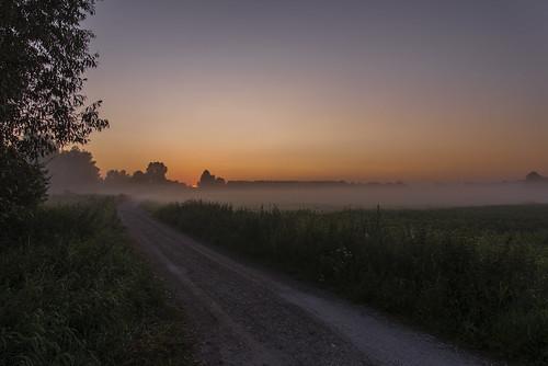 nature fog sunrise germany landscape deutschland nikon day nebel natur nikkor landschaft sonnenaufgang d600 2485