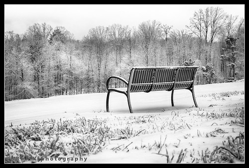 winter snow ice grass bench backyard seat forsyth caney forsythpark forsythcounty southforsyth