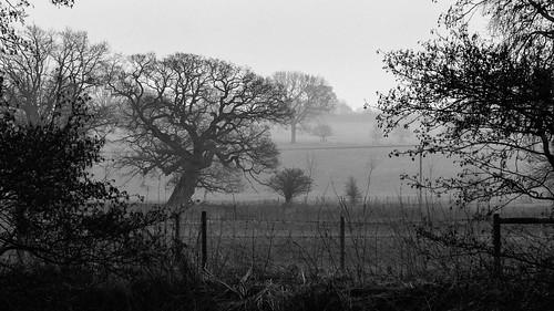 aldermaston avon berkshire canal countryside fields fog kennet mist morning river sunrise water padworth england unitedkingdom