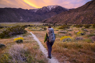 Pacific Crest Trail | by blmcalifornia