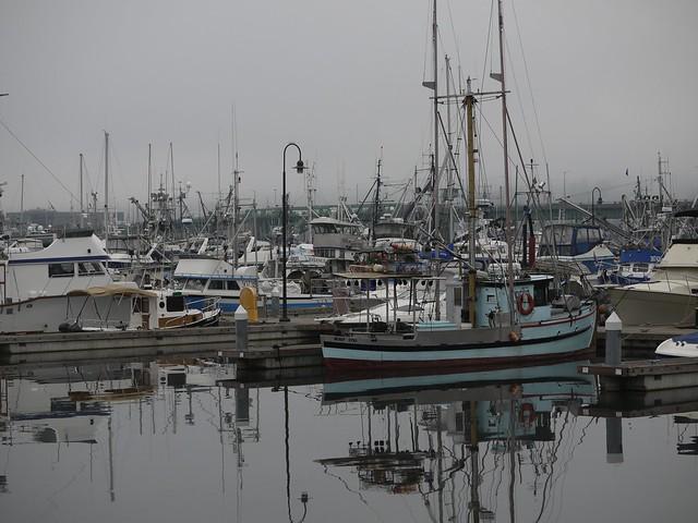 月, 2013-10-14 09:52 - Saimon Bay, Ballard