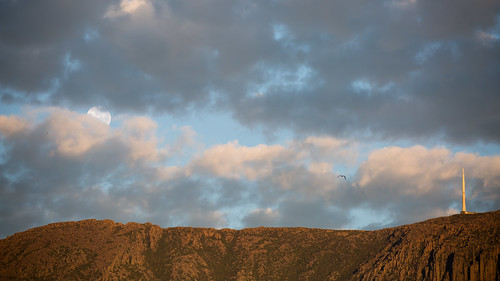 mtwellington mountain clouds sunrise morning hobart tasmania moon lunar birds bird flying sky moonset