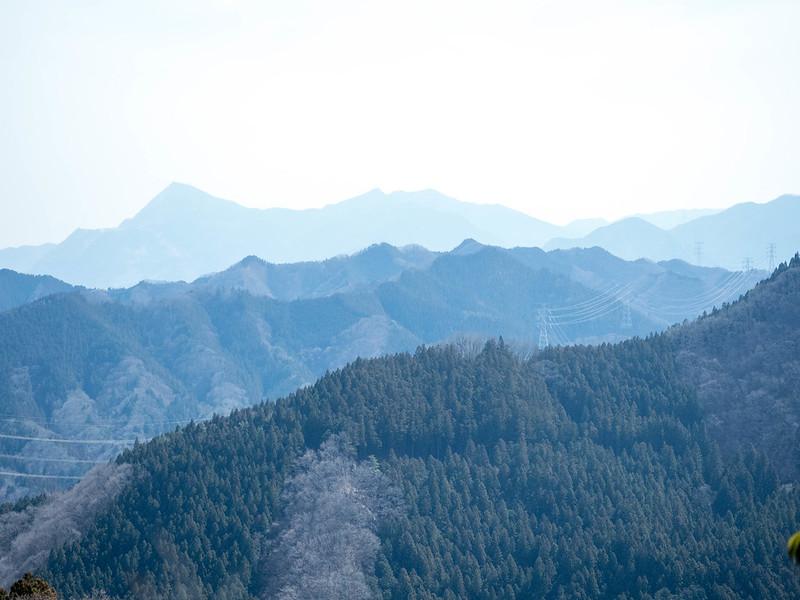 20170312-四阿屋山-0230.jpg